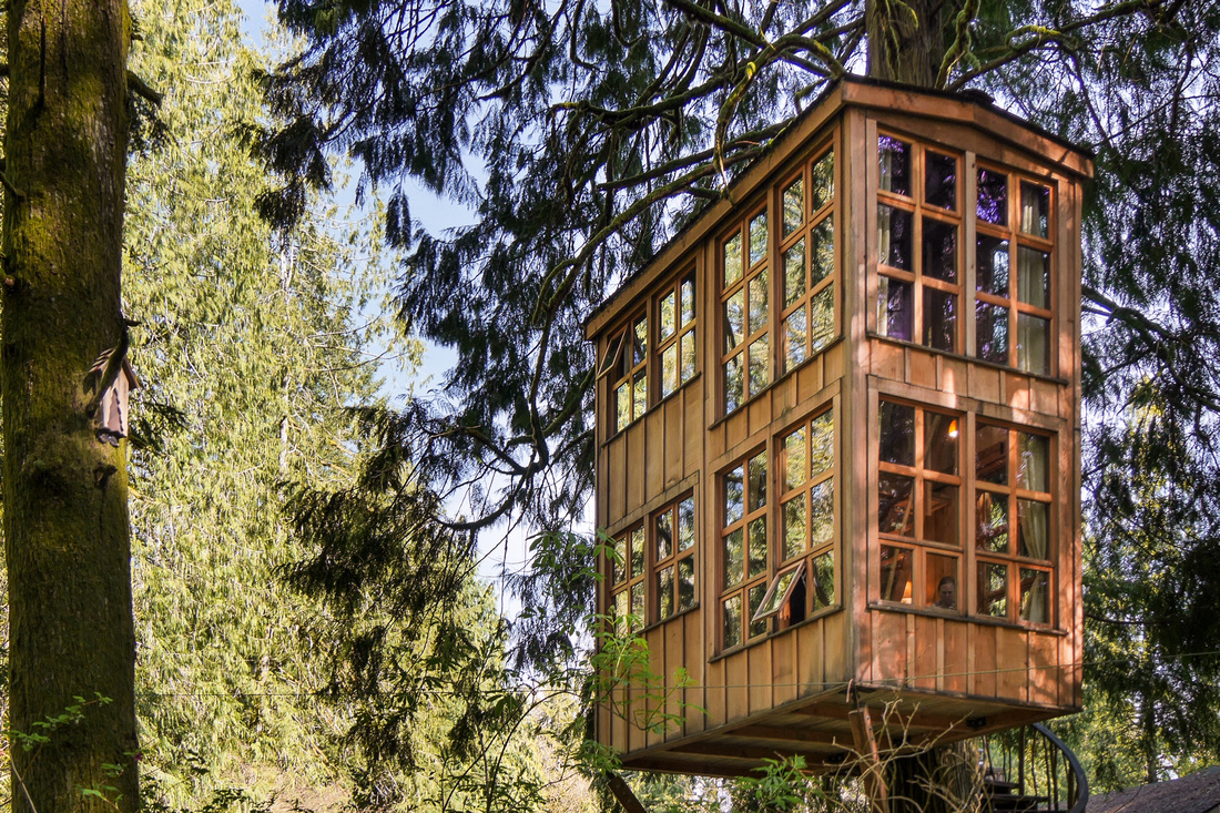 Trillium treehouse 3