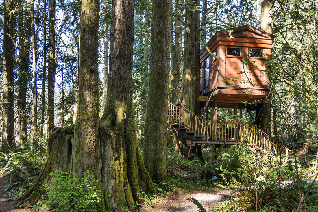 Bonbibi treehouse