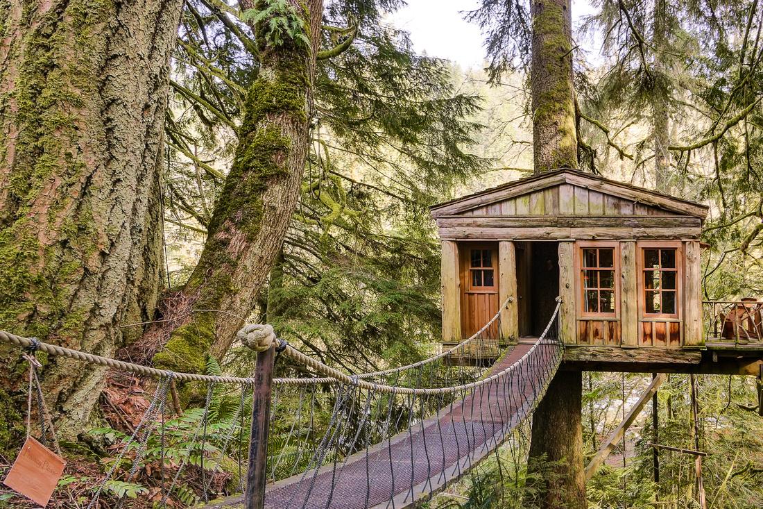 Temple Blue Moon treehouse 2