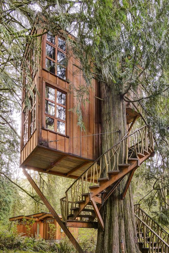 Trillium treehouse 2