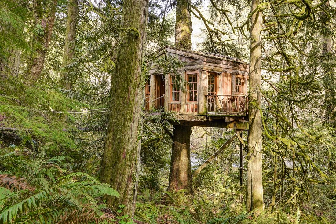 Temple Blue Moon treehouse